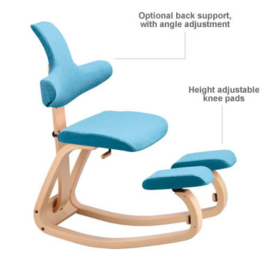 Review Of The Best Ergonomic Chairs Ergonomic Evolution