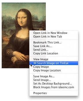 tineye image search browser plugin